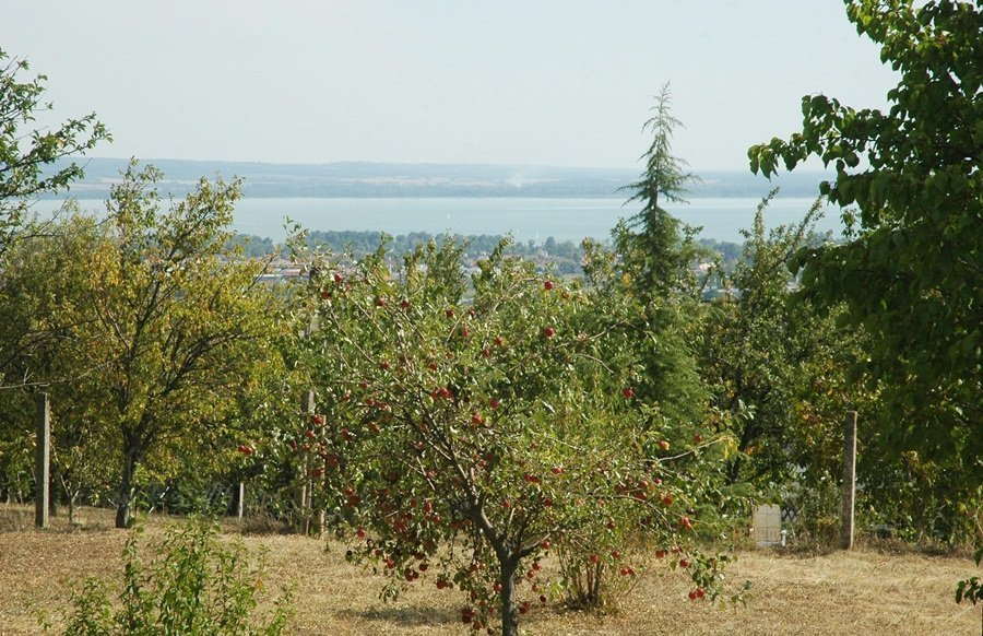 Mit Panoramablick auf den Balaton